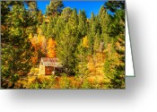 Nevada Greeting Cards - Sierra Nevada Rustic Americana Barn with Aspen Fall Color Greeting Card by Scott McGuire