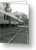 Tuolumne Greeting Cards - Sierra Railway Passenger Cars Greeting Card by Troy Montemayor