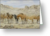 Wild Horse Greeting Cards - Siesta at Noon Greeting Card by Cathy Cleveland