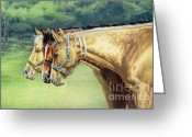 Quarter Horses Greeting Cards - Siesta Time Greeting Card by Carrie L Lewis