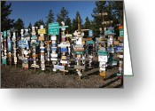 Watson Lake Greeting Cards - Sign posts forest in Watson Lake Yukon Greeting Card by Mark Duffy