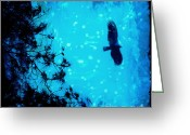 Buzzard Photo Greeting Cards - Silent Night Greeting Card by Katya Horner
