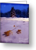 Snowy Night Digital Art Greeting Cards - Silent Night Greeting Card by Lj Lambert