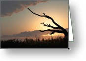 Old Greeting Cards - Silhouette Greeting Card by Bob Orsillo