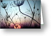 Sunset Photography Greeting Cards - Silhouette Flower Greeting Card by Luis Mariano González