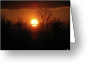 The Nature Of Sunsets Greeting Cards - Silhouette Sunset Greeting Card by Debra     Vatalaro