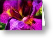 Morning Mist Images Greeting Cards - Silk and Satin Greeting Card by Judi Bagwell