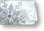 Freeze Greeting Cards - Silver blue snowflake  Greeting Card by Sandra Cunningham