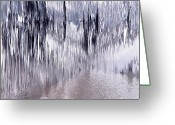 Devastation Greeting Cards - Silver devastation  Greeting Card by Carol and Mike Werner