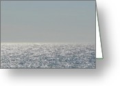 Shimmering Greeting Cards - Silver Light on Lake Michigan Greeting Card by Michelle Calkins