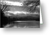 Winter Trees Greeting Cards - Silver Sunset Reflection Greeting Card by Carol Groenen