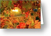 Leaves Photographs Greeting Cards - Silverado Magic sq Greeting Card by Mars Lasar