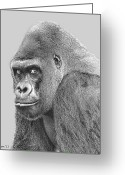 Ape. Great Ape Greeting Cards - Silverback 5 Greeting Card by Larry Linton