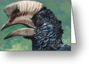 Hornbill Painting Greeting Cards - Silvery-cheeked hornbill Greeting Card by Svetlana Ledneva-Schukina