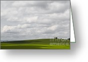 Autumn Photographs Greeting Cards - Simple Field Greeting Card by Andrea Hazel Ihlefeld