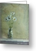 Wall Greeting Cards - Simply Daisies Greeting Card by Priska Wettstein