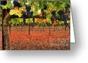 Cabernet Sauvignon Greeting Cards - SImply Divine Greeting Card by Mars Lasar