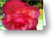 Flower Still Life Prints Greeting Cards - Single and Beautiful Greeting Card by Liz Evensen