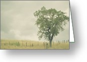 Oak Tree Greeting Cards - Single Oak Tree Greeting Card by Pamela N. Martin