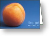 Apricots Photo Greeting Cards - Single ripe apricot ready to eat Greeting Card by Sami Sarkis