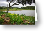 Beautiful Clouds Greeting Cards - Sintra Landscape Greeting Card by Carlos Caetano