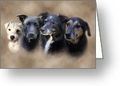 Dog Portrait Digital Art Greeting Cards - Siss Buddies Greeting Card by Barbara Hymer
