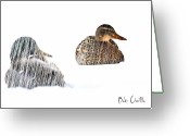 Winter Storm Photo Greeting Cards - Sitting Ducks in a blizzard Greeting Card by Bob Orsillo