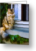 Calico Cat Greeting Cards - Sitting Pretty Greeting Card by Bob Nolin