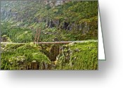 Skagway Greeting Cards - Skagway Alaska bridge 8583 Greeting Card by Michael Peychich
