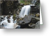 Skagway Greeting Cards - Skagway Waterfall 8619 Greeting Card by Michael Peychich