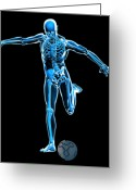 Kicking Football Greeting Cards - Skeleton Playing Football Greeting Card by Roger Harris