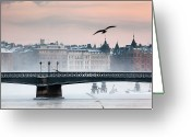 Seagull Photo Greeting Cards - Skeppsholmsbron, Stockholm Greeting Card by Hannes Runelöf