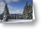 Winter Sports Photo Greeting Cards - Ski Run at Vail Resort Colorado Greeting Card by Brendan Reals