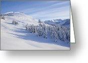 Backcountry Greeting Cards - Ski Tracks Greeting Card by Tim Grams
