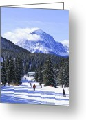 Snowy Greeting Cards - Skiing in mountains Greeting Card by Elena Elisseeva