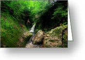 Skinny Dip Greeting Cards - Skinnydip at Welton Falls Greeting Card by Wayne King