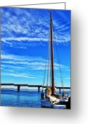 Dames Greeting Cards - Skipjack Greeting Card by Kelly Reber