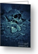 Death Head Greeting Cards - Skull in Dirt Greeting Card by Jill Battaglia