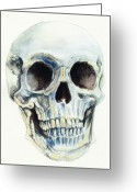 Skull Greeting Cards - Skull Greeting Card by Morgan Fitzsimons