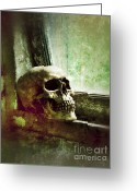 Death Head Greeting Cards - Skull on Old Windowsill Greeting Card by Jill Battaglia