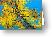 Colorado Prints Greeting Cards - Sky High 3 Greeting Card by Gary Kim