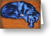 Black Lab Greeting Cards - Sleeping Blue Dog labrador retriever Greeting Card by Ann Powell