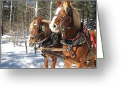 Sleigh Ride Greeting Cards - Sleigh Ride Greeting Card by Bonnie Goedecke