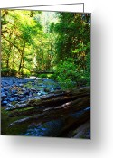 Clods Greeting Cards - Small Creek Greeting Card by Jim Moore