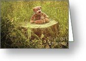 Teddybear Greeting Cards - Small little bears on old wooden stump  Greeting Card by Sandra Cunningham