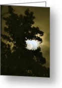 Sundown Greeting Cards - Smoke Dragon Tree Swallows Moon Greeting Card by CML Brown