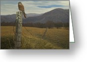 Yellow Beak Painting Greeting Cards - Smoky Mountain Hunter-American Kestrel Greeting Card by James Willoughby III