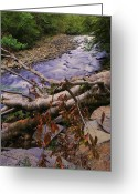 Ohio Country Greeting Cards - Smoky Mountain Stream Two Greeting Card by Robert Harmon