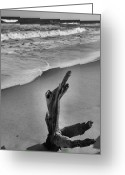 Beach Photograph Photo Greeting Cards - Snag And Surf Greeting Card by Steven Ainsworth