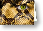 Snake Scales Greeting Cards - Snake Eye Greeting Card by Semmick Photo